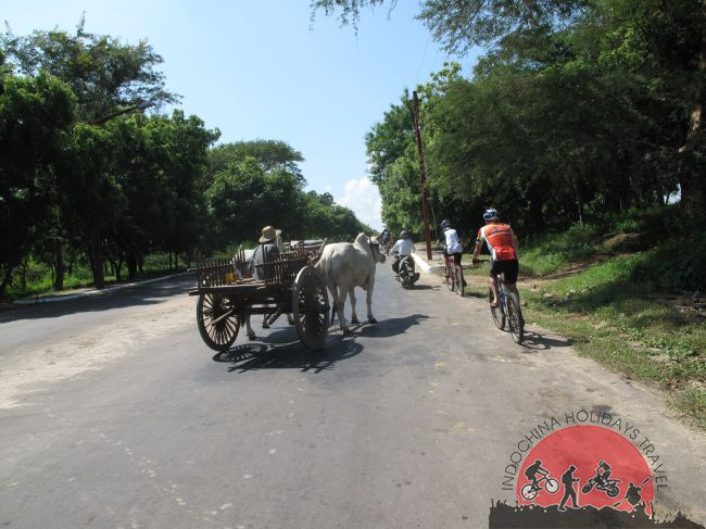 cycling Dalat